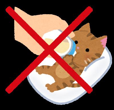 哺乳瓶でミルクを飲む子猫のイラスト(仰向け)