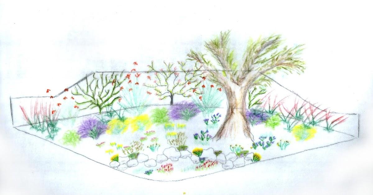 Cfppa des pays d 39 aude les bp am nagent les espaces verts for Entretien jardin narbonne