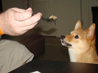 The Raw Dog Diet