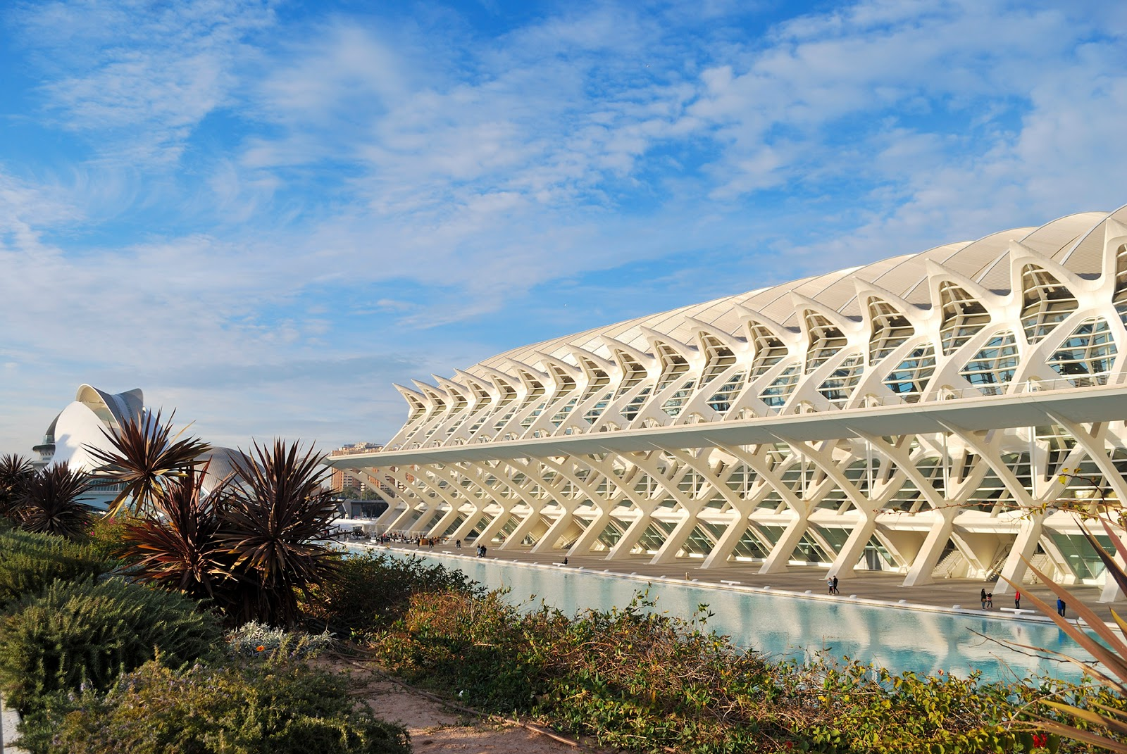 ciudad de las artes y las ciencias valencia city of arts and science