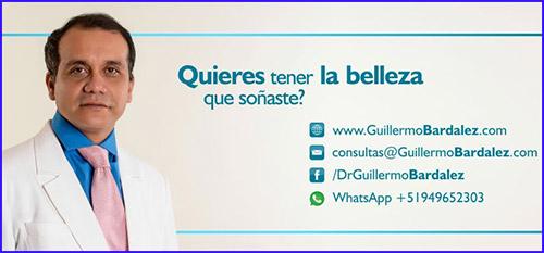 http://guillermobardalez.com/