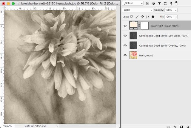 "CoffeeShop ""Good Earth"" Fine Art Texture/Overlay"