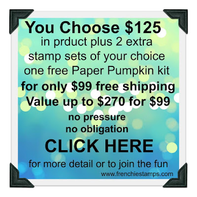 get over 250 of Stampin'Up! product for only $99