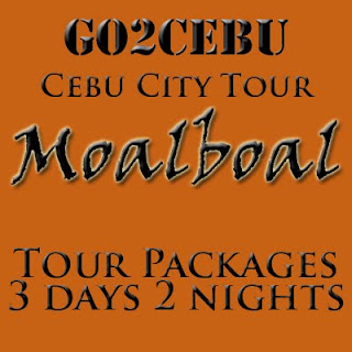 Cebu City + Moalboal Beach Adventure in Cebu Tour Itinerary 3 Days 2 Nights Package
