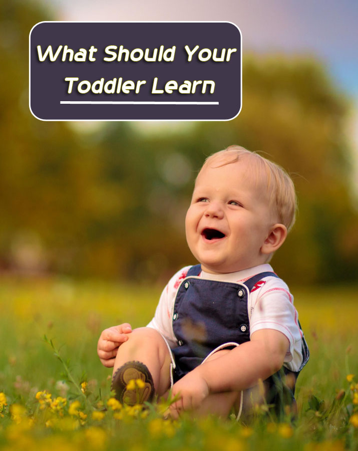 What Should Your Toddler Learn