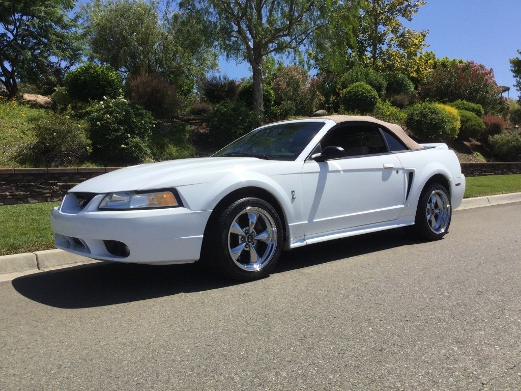 daily turismo auction watch 1999 ford mustang cobra. Black Bedroom Furniture Sets. Home Design Ideas