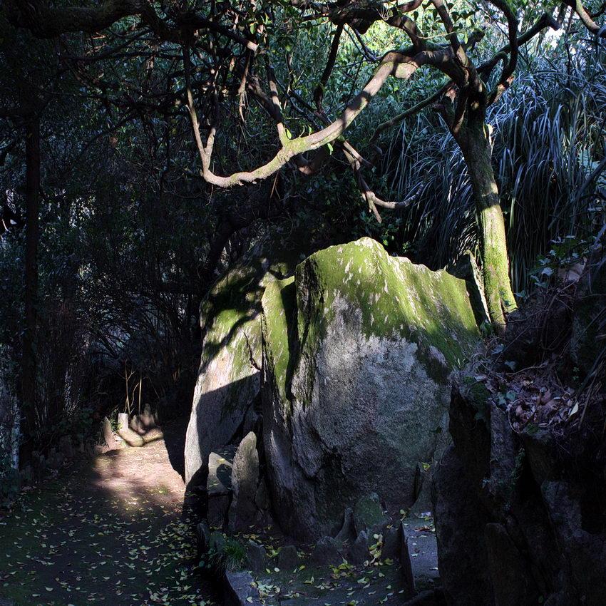 Caminho apertado e sombrio por entre rochas e árvores iluminado fortemente muna pequena parte