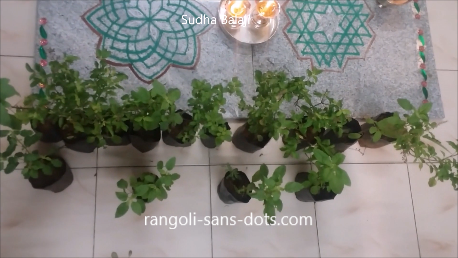 Tulsi-plant-for-Navratri-gift-ideas.png