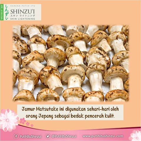 SHINZU'I Skin Lightening & Anti Acne Facial Wash Review 4