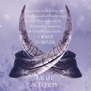 Excerpt teaser from TRUE STORM by L.E. Sterling, giveaway