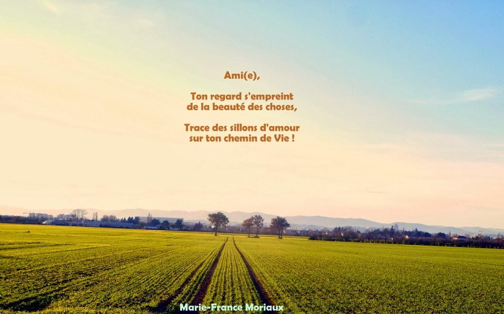 La Poésie Du Coeur 2013