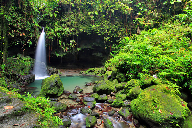 Tourist Attractions in Dominica