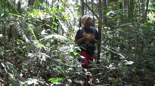 aktivis lingkungan dari Aceh Mr. Jali Leuser