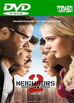 Buenos vecinos 2 (2016) DVDRip