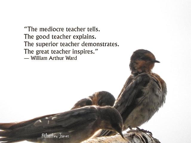 'The mediocre teacher tells. The good teacher explains. The superior teach demonstrates. The great teacher inspires.' - William Arthur Ward