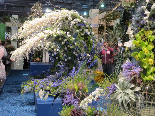 Philadelphia Flower Show 2020- Mare Nostrum The Wave