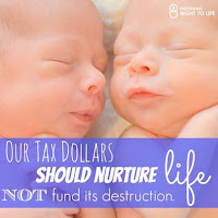 Our Tax Dollar should Nurture Life, NOT fund its destruction