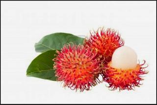 inilah manfaat buah rambutan untuk kesehatan ibu hamil