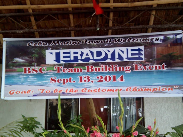 Teradyne BSC team building event