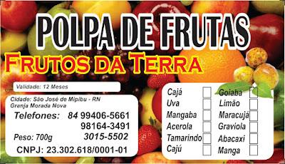 POLPAS DE FRUTAS FRUTOS DA TERRA 100% NATURAL