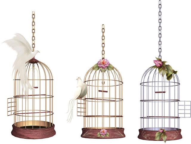 kuş kafesi temalı dekupaj resimleri