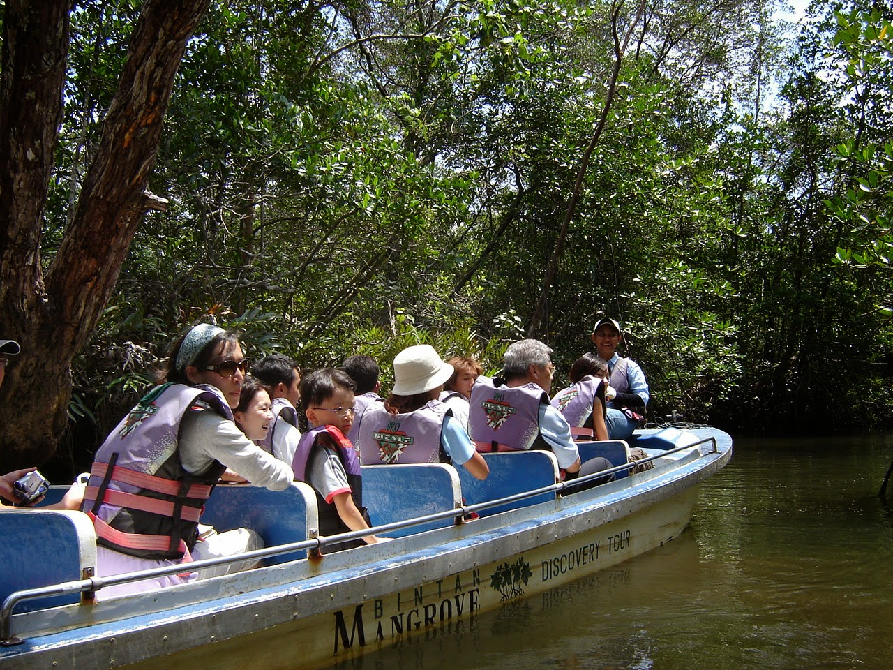 pesona wisata indonesia: Ekowisata Mangrove Bintan Kepulauan Riau