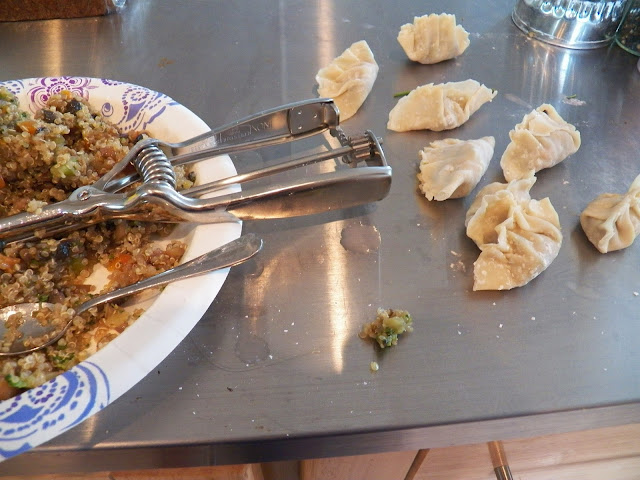 Pork Potstickers with Healthy Solutions Spice Blend