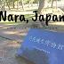 |TRAVEL| Nara, Japan