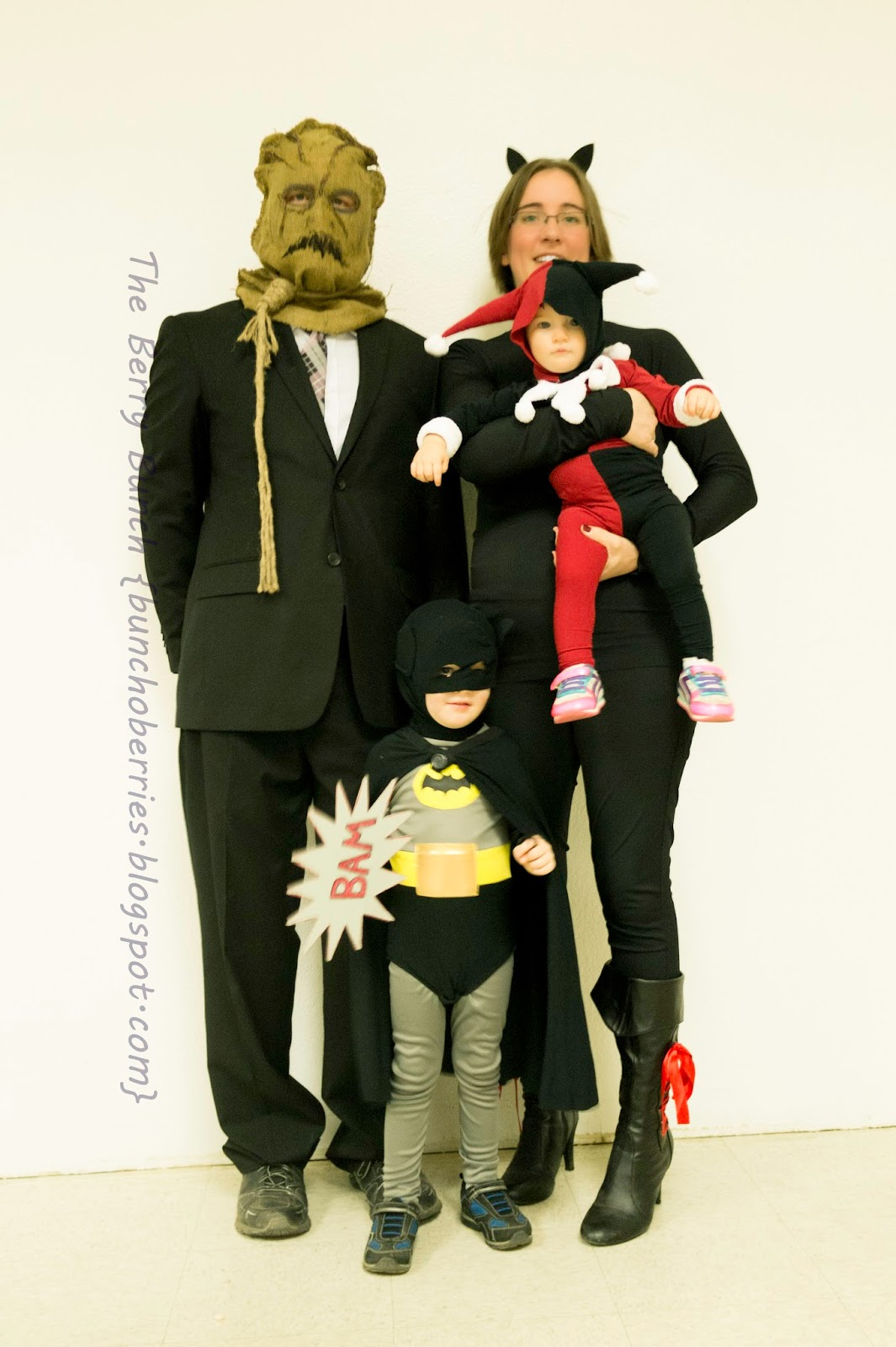 The Berry Bunch: Happy Halloween: Batman Theme Costumes