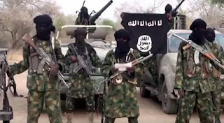 Dailynewsvibe - Boko Haram kidnaps another set of girls
