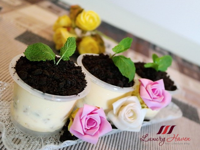 valentines day potted plant ice cream desserts recipe