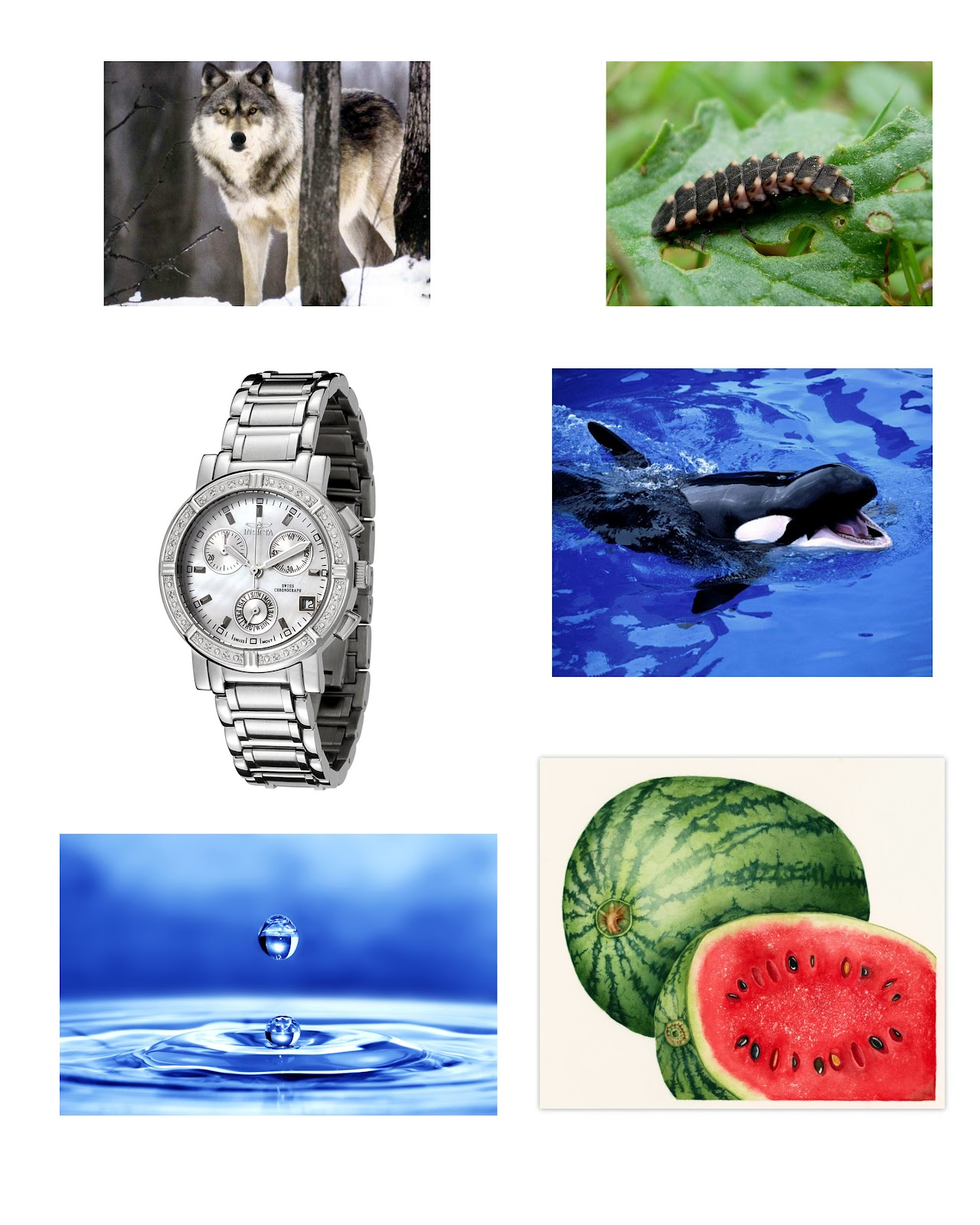 Resource Pictures Of Objects Start With Letters A To Z