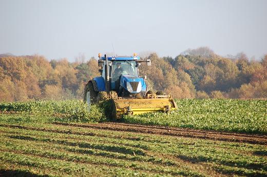 Aprobado el proyecto de ley que fija la futura estructura productiva agraria valenciana