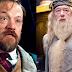 Animais Fantásticos e Onde Habitam | Fãs querem que Jared Harris viva Dumbledore no segundo filme