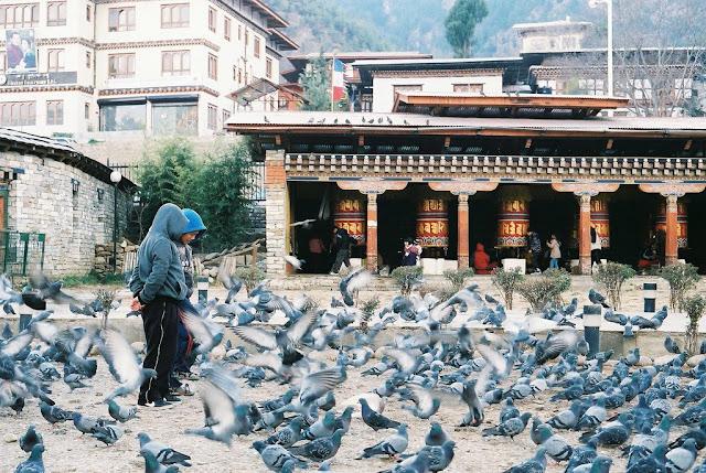 strangest fact around the world bhutan kkday