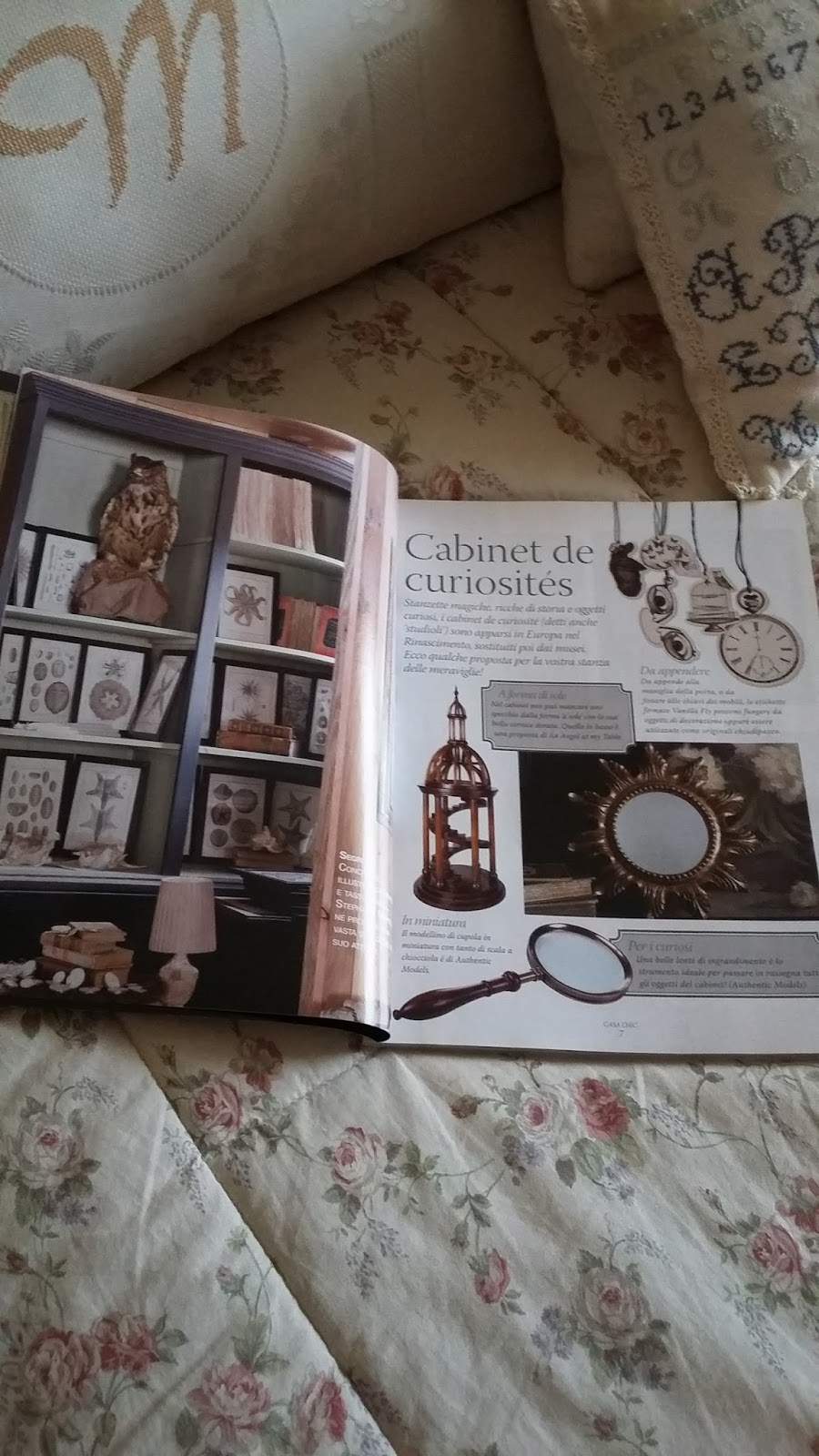 ilclanmariapia le cabinet de curiosit s. Black Bedroom Furniture Sets. Home Design Ideas