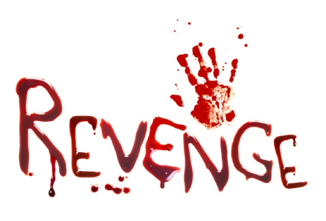 Image result for revenge