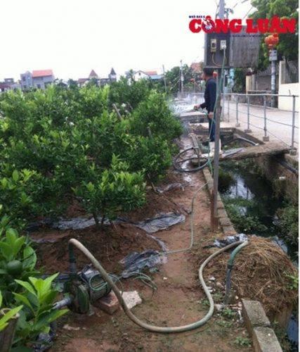 Người dân bỏ tiền ra làm giếng khoan để phục vụ tưới nước cho cây trồng