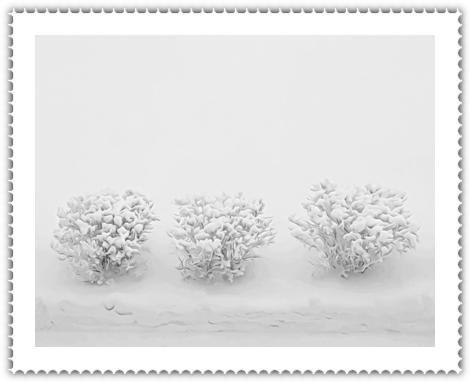 Фото для вас бесплатно / Photo is free for you, p_i_r_a_n_y_a - волшебные шары