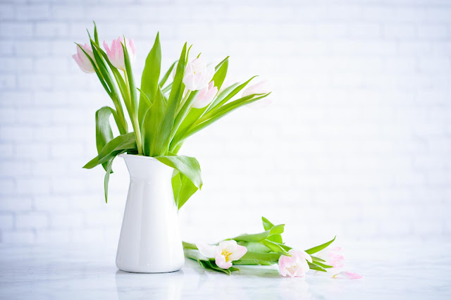 White jug filled with tulips with some laid along side it