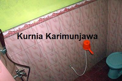 foto toilet homestay pelangi