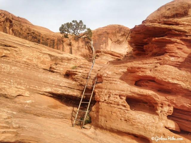 Girl On A Hike Hiking To Corona Arch Moab