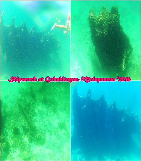 Lighthouse Shipwreck, Malapascua Island