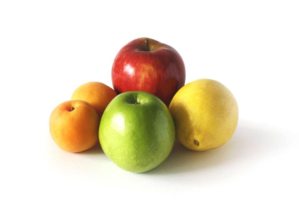 5 rboles frutales para plantar en macetas amigos de la - Plantar limonero en maceta ...