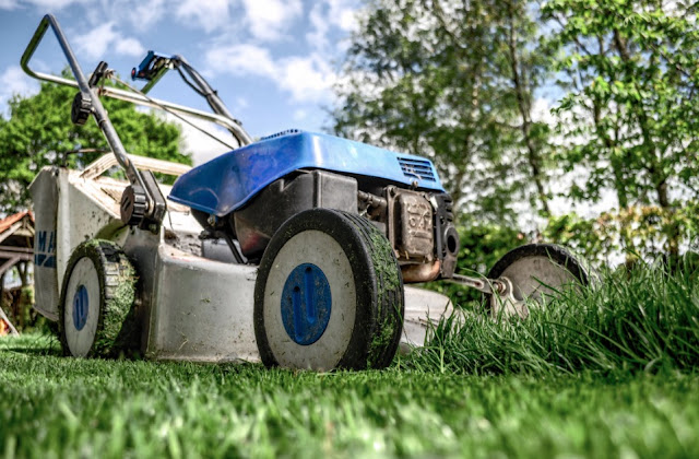 How To Mow Overgrown Lawn Without Any Harm