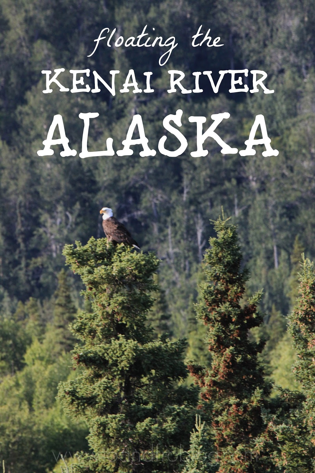 kenai river alaska float trip