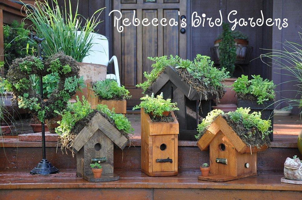 The Garden Roof Coop Living Roof Birdhouses Feeders And