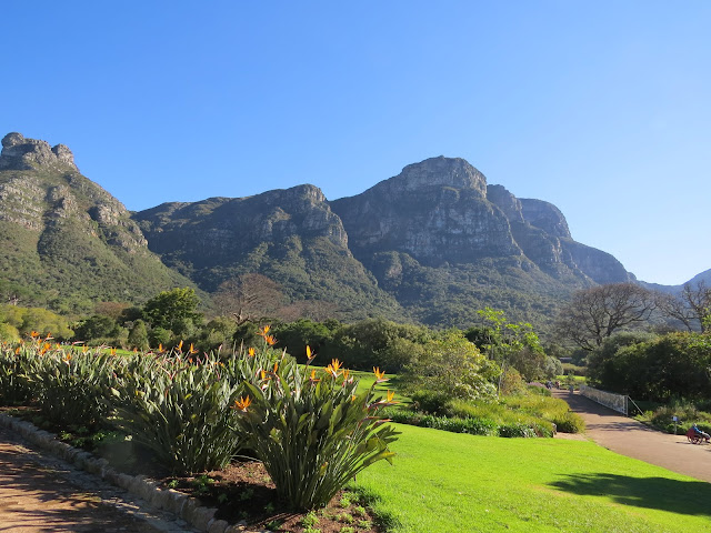 Kirstenbosch Botanical Gardens near Cape Town in South Africa