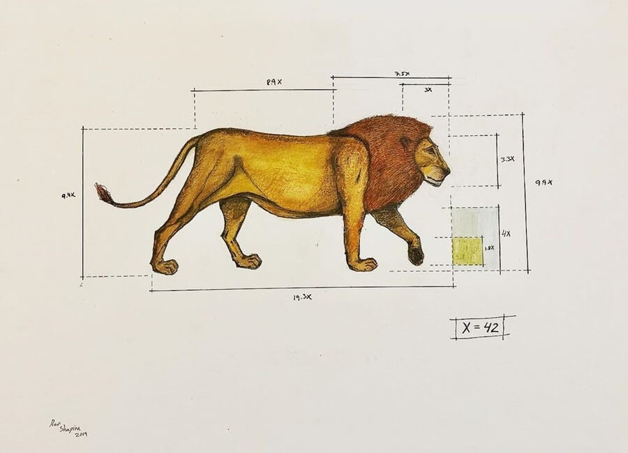 07-Lion-Ran-Shapira-Animal-Drawings-from-a-Sculptor-s-Perspective-www-designstack-co