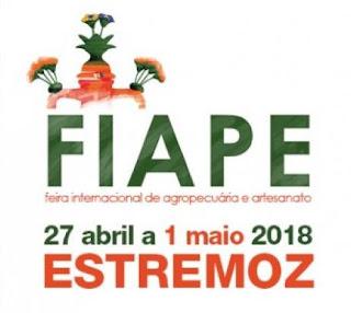Programa e cartaz FIAPE 2018